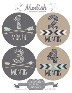 Hey, I found this really awesome Etsy listing at https://www.etsy.com/listing/222199753/free-gift-baby-boy-monthly-stickers