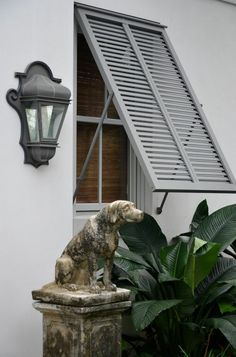 Love these shutters and the statue  of the dog!!!!   I want him!  This is  in Palm Beach.     5th and state