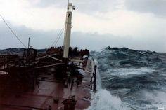 Myrskyn jälkimaininkeja 1982
