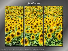 Framed Huge 3 Panel Canvas Art Flower Fields Sunflowers Giclee Canvas Print - Ready to Hang on Etsy, $99.00