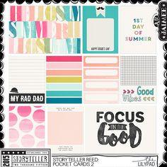 Storyteller Reed : Pocket Journal Cards 2