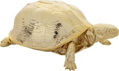 pet turtle.  Art imitates life in a gilded sculptural box by award-winning product and environment designer Harry Allen.  Based in New York, Allen created this creature as part of his Reality Series—pieces of which are on permanent display at prestigious museums.  Cast in the likeness of an actual turtle, resin replica is plated in gleaming gold chrome to highlight every true-to-life detail.  Detailed shell lifts to stow jewelry, coins, stamps, paper clips and assorted sentimental finds.