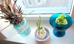 3 grønnsaker du kan re-dyrke i vinduskarmen Glass Vase, Veggies, Frisk, Table Decorations, Keto, Gardening, Mood, First Grade, Vegetable Recipes
