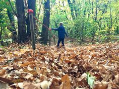 A short winrter walk along the Percorso Cometa (cometa trail) in the woods of Mendrisio. To learn about the world of the blind and vision-impaired people. Mini Me, Trail, Explore, Mountains, World, Children, Kites, The World, Boys