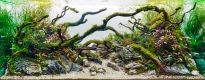 Aquarium Size W120×D50×H50(cm)