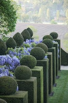 Topiary Jardins labyrinthiques du Château de la Ballue, Brittany, France (not far from Mont Saint-Michel). - It is amazing what some are capable of accomplishing in the garden. If you are unfamiliar with topiary it is t