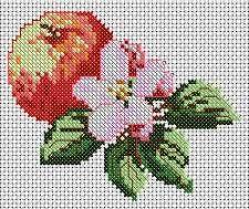 Apple Flower -- requires membership on DMC site