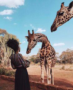 Discount Airfares Through The USA To Germany - Cost-effective Travel World Wide Fotos Com Animais, Girafas, Natureza, Safari Kenia Hotel, Adventure Awaits, Adventure Travel, Diani Beach Kenya, Places To Travel, Travel Destinations, Travel Tips, Travel Photos, Fun Travel