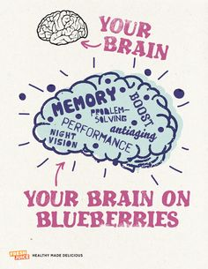 Your Brain on Blueberries #FJQuotables