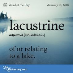 Lacustrine - of or relating to a lake. The lacustrine organisms form a union to unite and become the Creature From the Bluish Lagoon. Unfortunately, disagreement among the factions on the color of the eyes end the project before it reaches shore. Unusual Words, Weird Words, Rare Words, Big Words, Latin Words, Unique Words, Great Words, Good Vocabulary, English Vocabulary Words