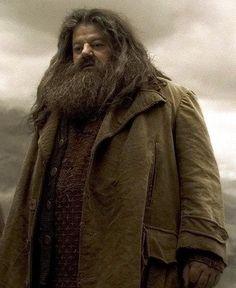 30 best rubeus hagrid images rubeus hagrid harry potter hogwarts