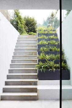 Stairs Outdoor Steps Plants 56 Ideas For 2019 Design Patio, Exterior Design, Garden Design, House Design, Villa Design, Stairs Architecture, Garden Architecture, Architecture Design, Outdoor Steps