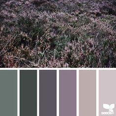 today's inspiration image for { color field } is by @mijn.grid ... thank you, Sisilia, for another incredible #SeedsColor image share!