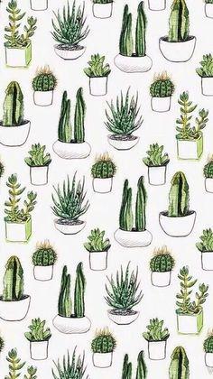 Cactus art