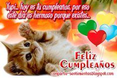 Yupi... hoy es tu cumpleaños, por eso este día es hermoso porque existes... FELIZ CUMPLEAÑOS AMOR