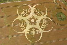Graancirkel van 25 juli 2010 op Roundway Hill