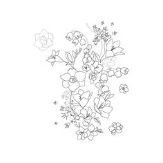 Floral Illustrations ❤ liked on Polyvore featuring fillers, backgrounds, flowers, drawings, doodles, effects, text, textures, quotes and embellishments