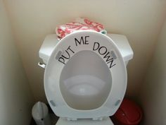 This is for the bathroom Chad uses when he is over...I did it with my cricut