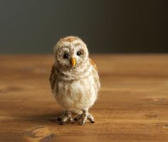 Felted Miniature Barred Owl