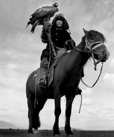 Photo by Jeroen Toirkens, riding horse with large bird,  eagles, hawks on arm,