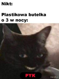 Very Funny Memes, Haha Funny, Lol, Polish Memes, Weekend Humor, Reaction Pictures, Me Me Me Anime, Best Memes, Fnaf