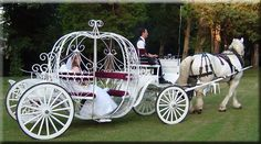 "Cinderella Wedding ~ Your Prince could place a mock ""glass slipper"" on your foot as a symbol of your perfect union. Of course, you'll want to leave with your Prince in a horse drawn carriage! Horse And Carriage Wedding, Horse Wedding, Horse Carriage, Dream Wedding, Wedding Dj, Perfect Wedding, Cinderella Theme, Cinderella Carriage, Cinderella Wedding"