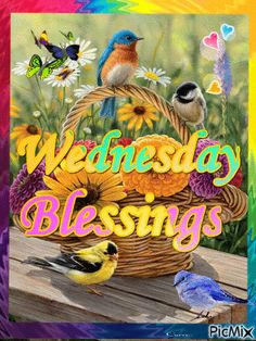 Wednesday Blessings days days of the week wednesday hump day graphic happy wednesday wednesday quote wednesday blessings