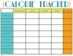 calorie counter log