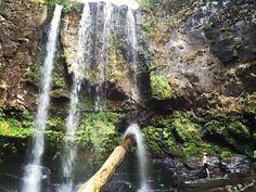 Great Ocean Road Adventure #waterfall #lorne #adventure #love #wanderlust #roadtrip #fitness #fitcouple #travel #nature #water #world #australia by randyrose1 http://ift.tt/1IIGiLS