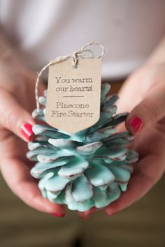 DIY - How to make Pinecone Fire Starter