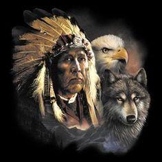 Indian Wolf Eagle PROFESSIONAL HEAT PRESS TRANSFER for T Shirt Sweatshirt 771e #AB
