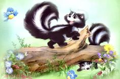 Skunk By Artist Penny Parker Nocturnal Animals, Woodland Animals, Animals And Pets, Cute Animals, Draw Animals, Penny Parker, Baby Skunks, Animal Books, Animal Sketches