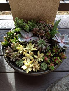 Succulent Pot, by Sun and Moon Crafts