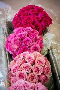 Pink Ombre Ballroom Wedding Recap (Pic Heavy) - Weddingbee