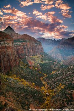 Canyon Overlook, Zion Canyon, Zion National Park, Utah