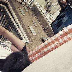 Life with cats! Cats, Life, Animals, Gatos, Animales, Animaux, Animal, Cat, Animais