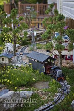 For next month's issue of Rural Missouri I did a story on Mark Hann of O'Fallon, who has taken his hobby of model railroading outside to the. N Scale Model Trains, Model Train Layouts, Garden Railings, Garden Railroad, Fairy Garden Supplies, Fairy Garden Accessories, My Secret Garden, Miniature Fairy Gardens, Fairy Houses