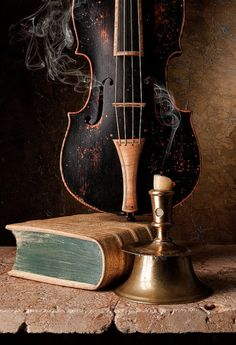 violin and book