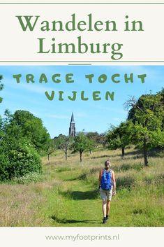 Walking In Sunshine, Holland, Travel Around The World, Around The Worlds, Walkabout, Camper, Bergen, Netherlands, Beautiful Places