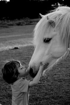 I will own my own white horse that my kids will be able to ride And I can take a picture like this :)