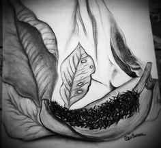Desenho com carvão Autoria: Céu Bessa