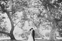 gorgeous wedding couple shot