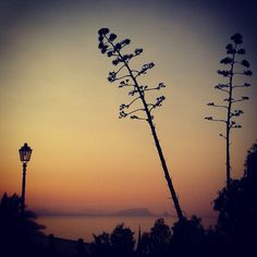 Sunset in my town in Sicily !