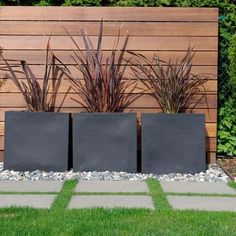 Modern Exterior Fencing Design Ideas, Pictures, Remodel, and Decor - page 32