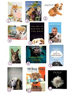12 Dog Books Worth Reading in 2013  http://petanthology.com/12-dog-books-worth-reading-in-2013/