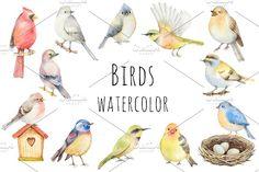 Watercolor birds. by Elena Medvedeva on @creativemarket