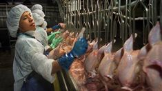 Tyson Foods Promises Better Conditions And Safety For Meat Workers  : The Salt : NPR