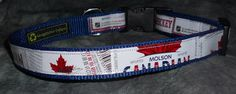 Adjustable Dog Collar from Recycled Molson Beer labels by squigglechick