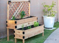 DIY Tiered Raised Garden Bed - Full Tutorial and Plans - garden landscaping Tomato Planter, Vegetable Planters, Vegetable Gardening, Raised Garden Bed Plans, Building Raised Garden Beds, Growing Vegetables In Containers, Container Gardening Vegetables, Succulent Containers, Container Flowers