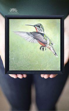 Hummingbird Art Print Female Hummingbird in Flight by bonnielecat